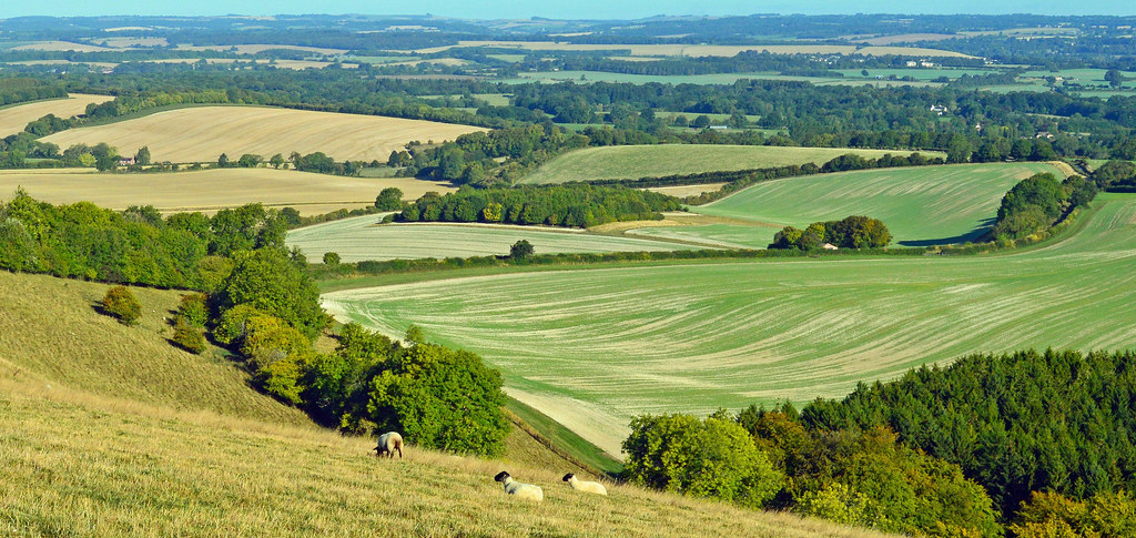 Inkpen, Berkshire by Oswald Bertram.jpg