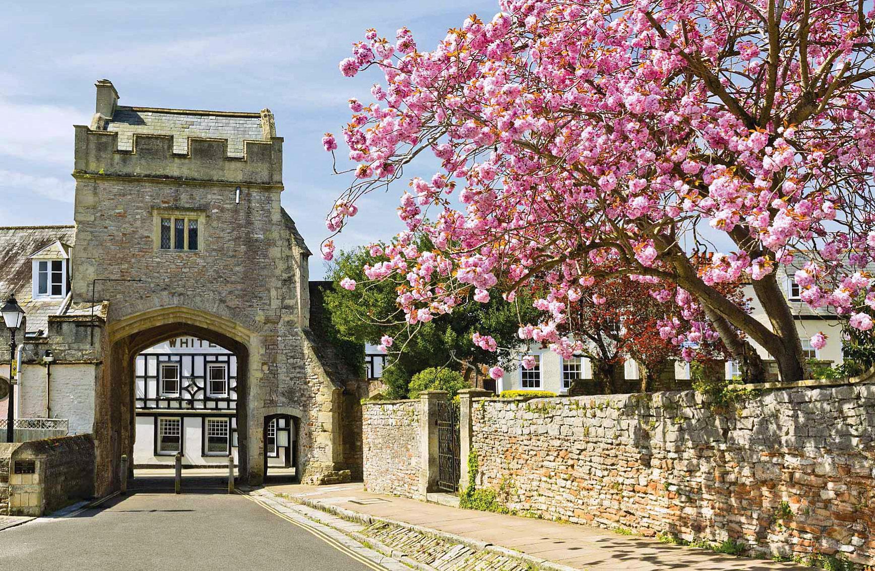 Brown's Gatehouse in Wells, Somerset by Christopher Nicholson.jpg