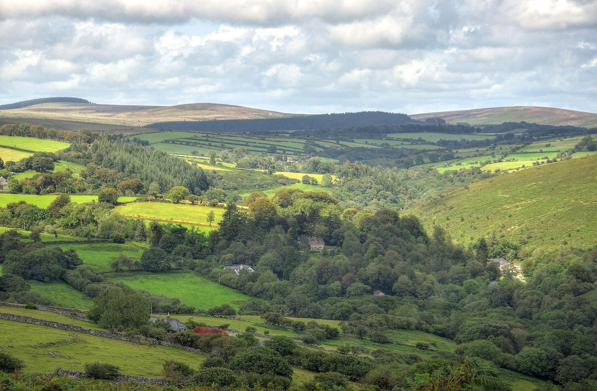 Valley of the River Dart, Dartmoor by Baz Richardson.jpg