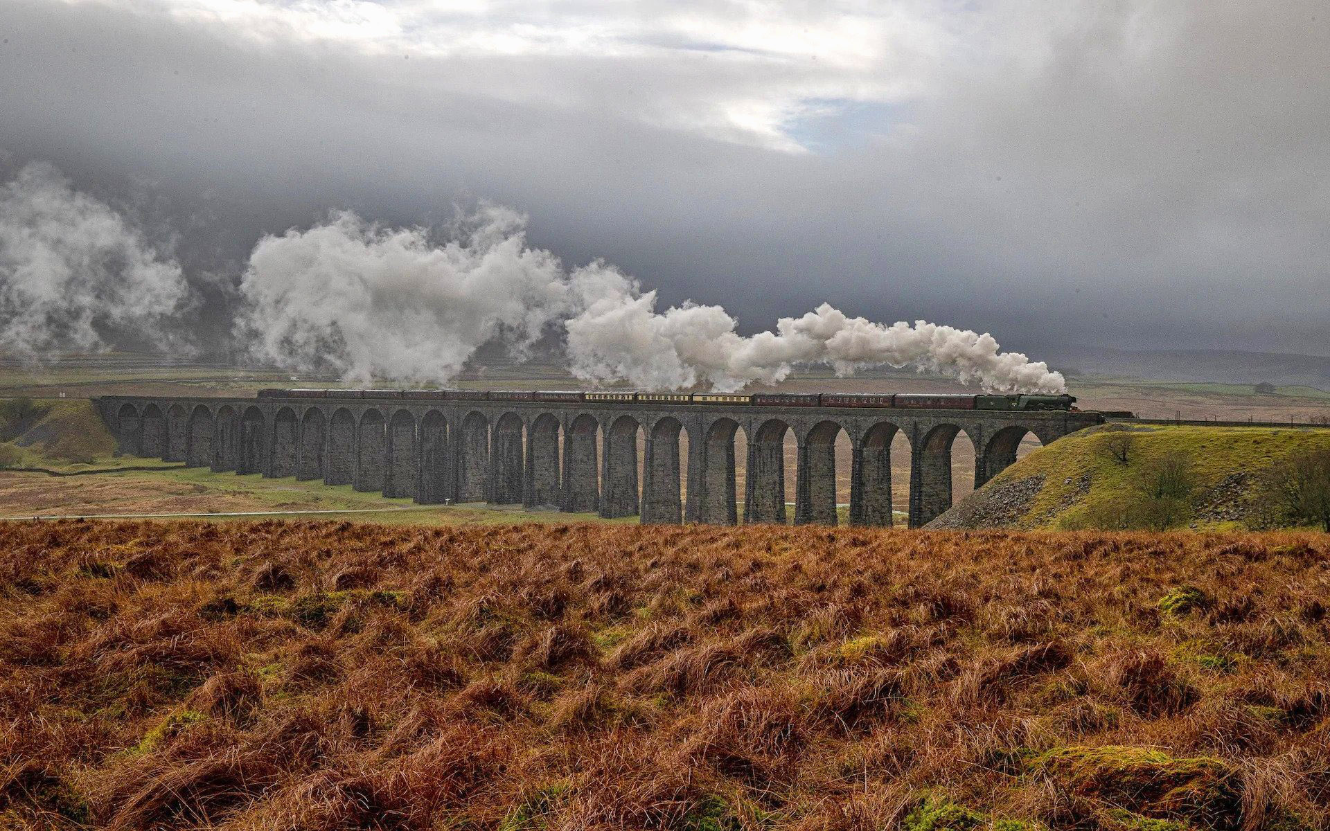 The Flying Stotsman passes over Ribblehead Viaduct, North Yorkshire by Charlotte Graham.jpg