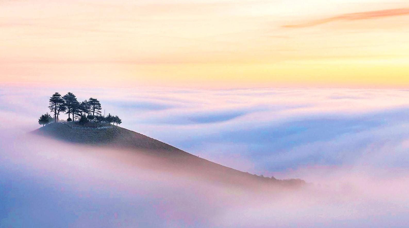 Colmer's Hill, Bridport, Dorset by Mark Andreas Jones.jpg