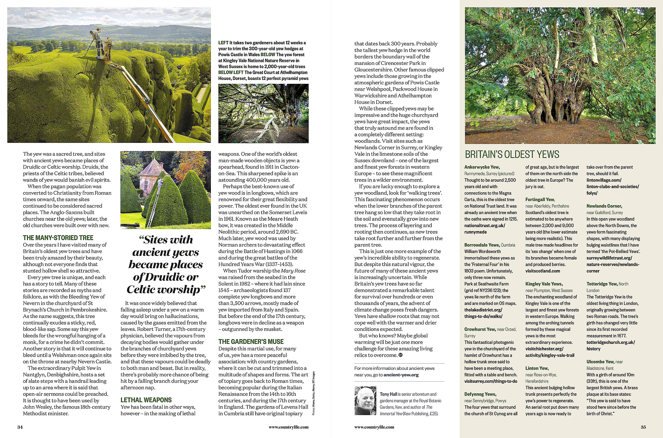 BBC Countryfile 2020-01 Trees 03.jpg