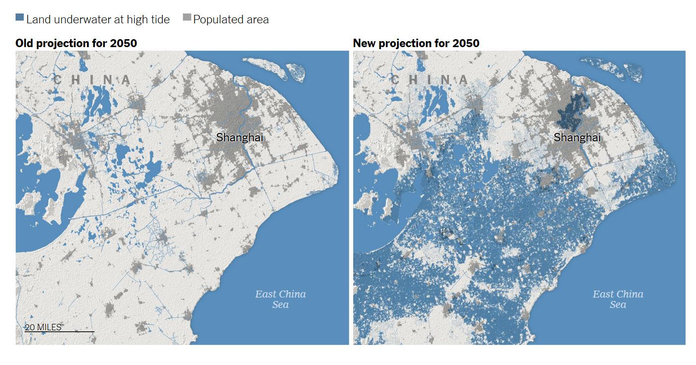 2050 Shanghai.jpg