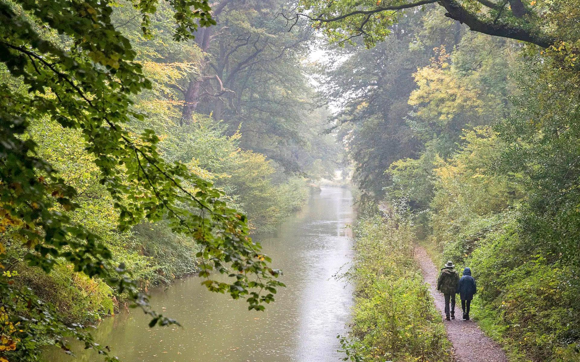 Basingstoke canal, Dogmersfield, Hampshire by Andrew Matthew.jpg