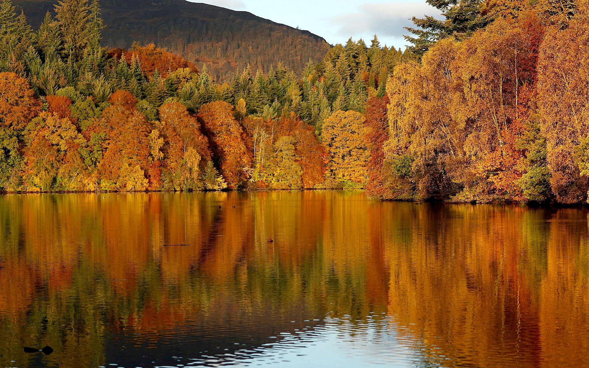 Loch Faskally, Pitlochry, Scotland by Russell Cheyne.jpg