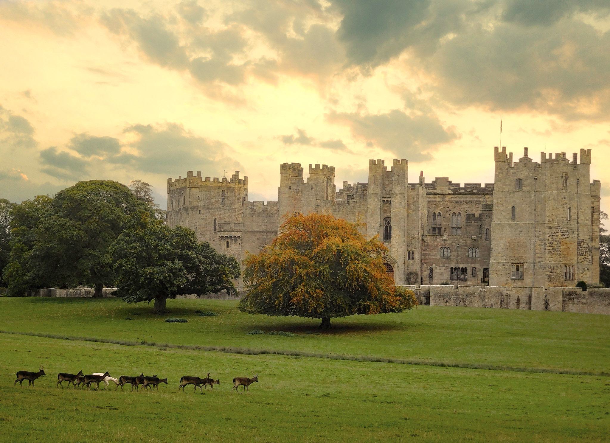 Golden hour at Raby Castle by Jimsumo999.jpg