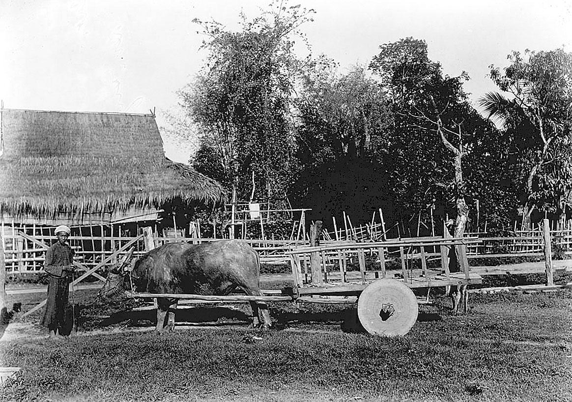 1915 Chumphon Province village.jpg