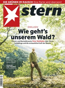 Stern 2019-08-22.jpg