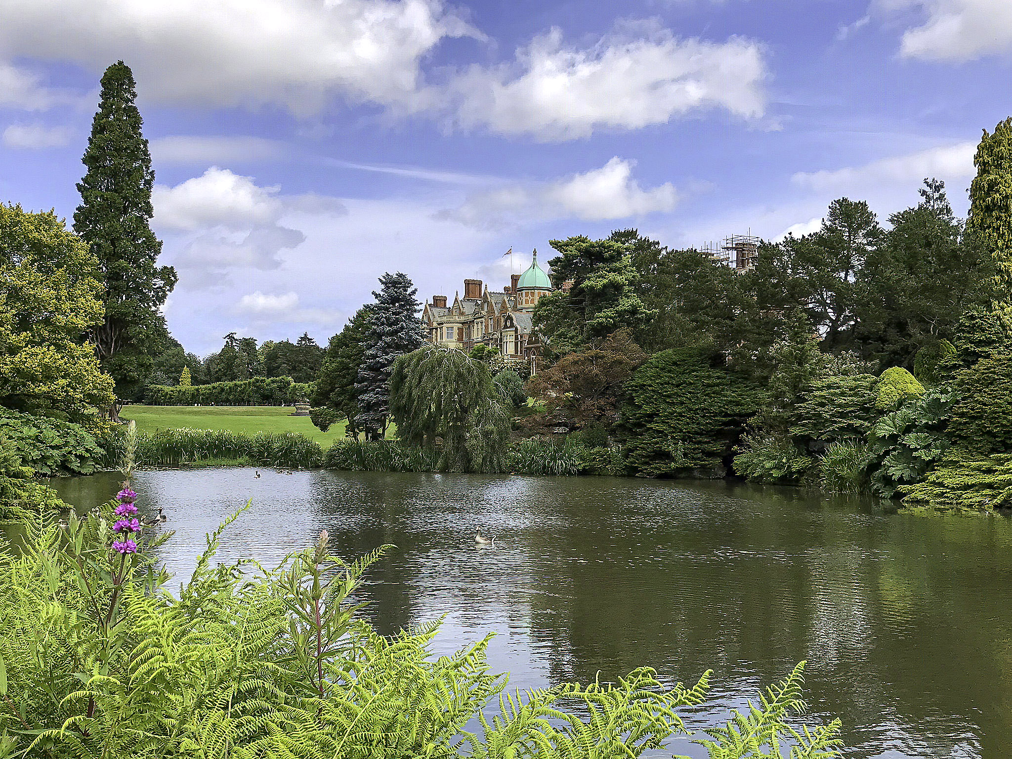 Lake at Sandringham House by Amy Sparwasser.jpg