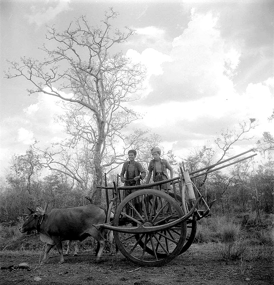 1922 Vintage and common countryside cart as displayed, Lopburi.jpg