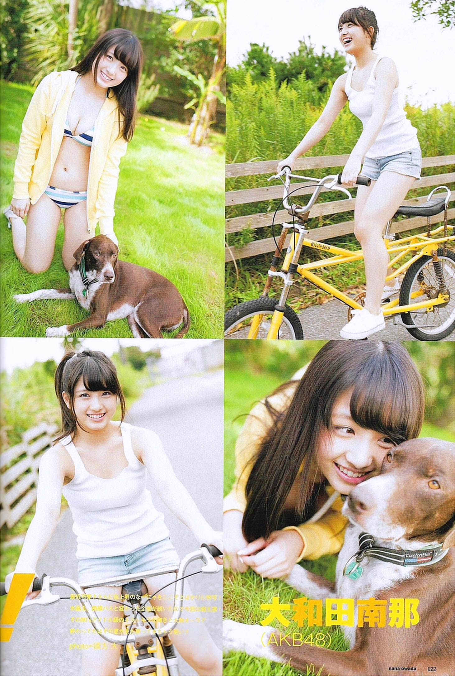 NOwada UTB 1512 02.jpg