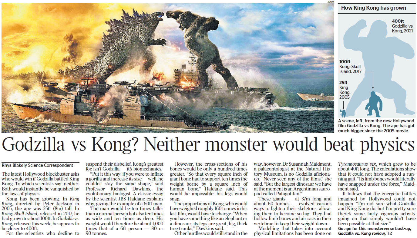 Times 210402 Godzilla vs Kong.jpg