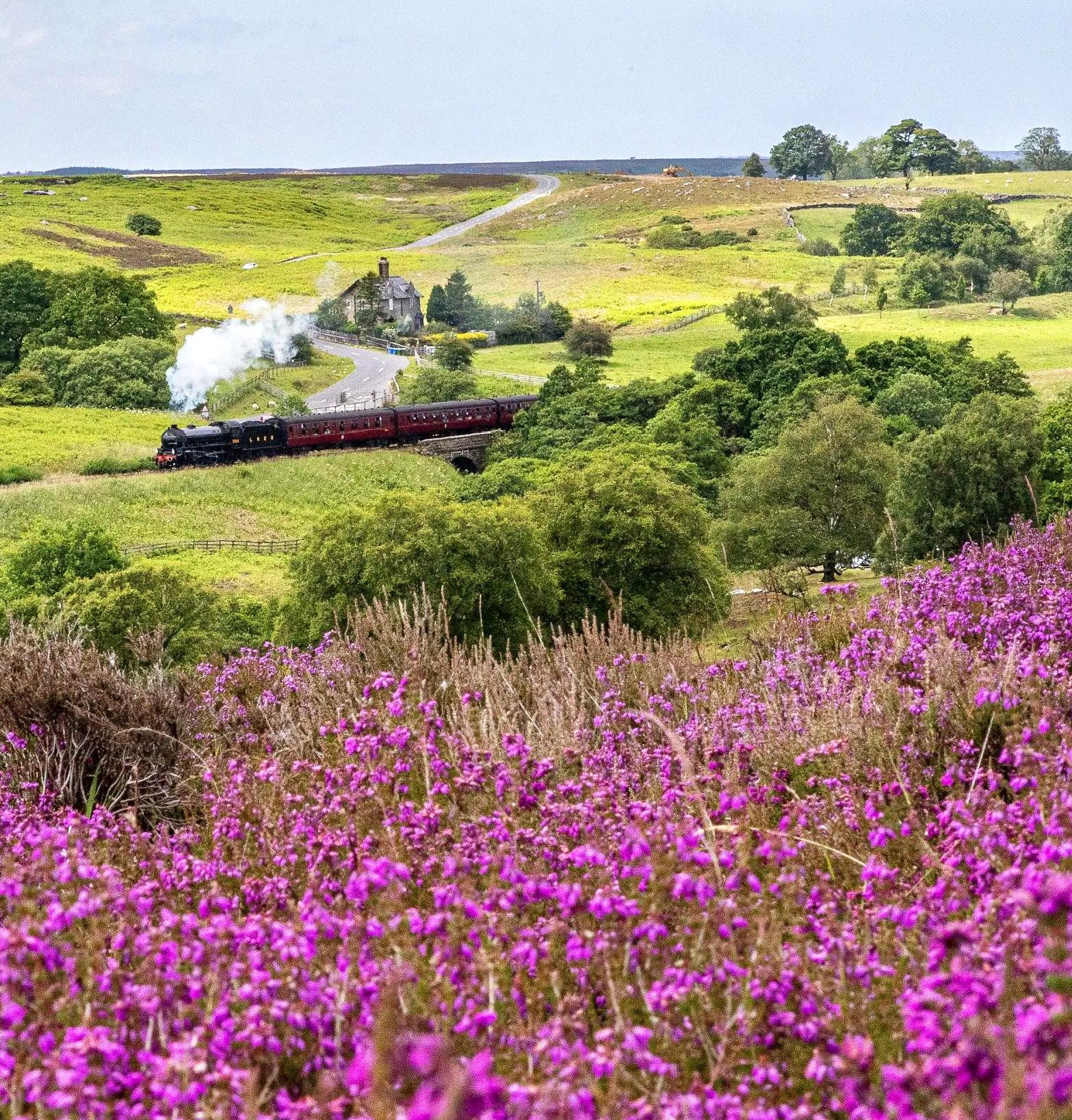 North York Moors National Park by Charlotte Graham.jpg
