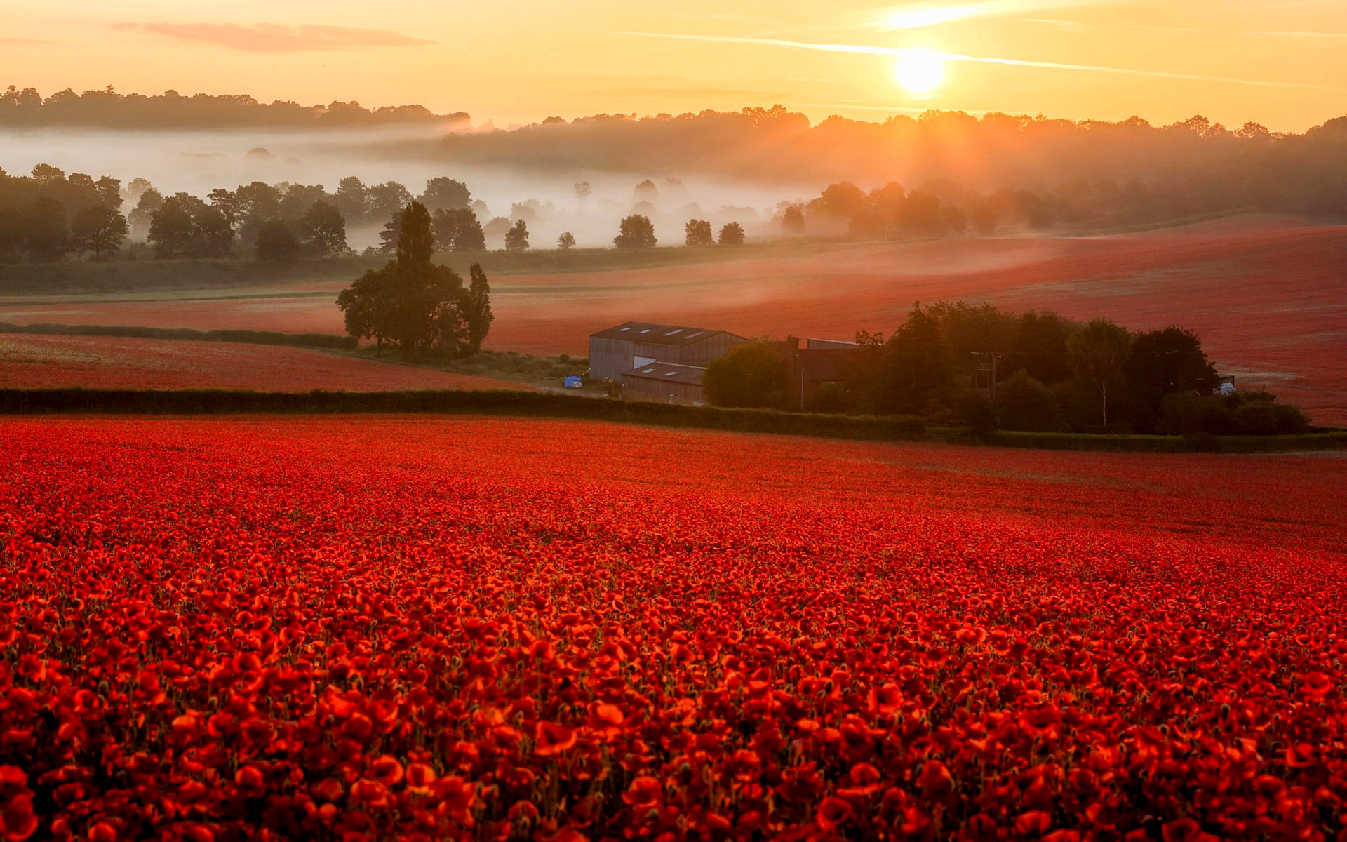 Worcestershire countryside by Verity Milligan.jpg