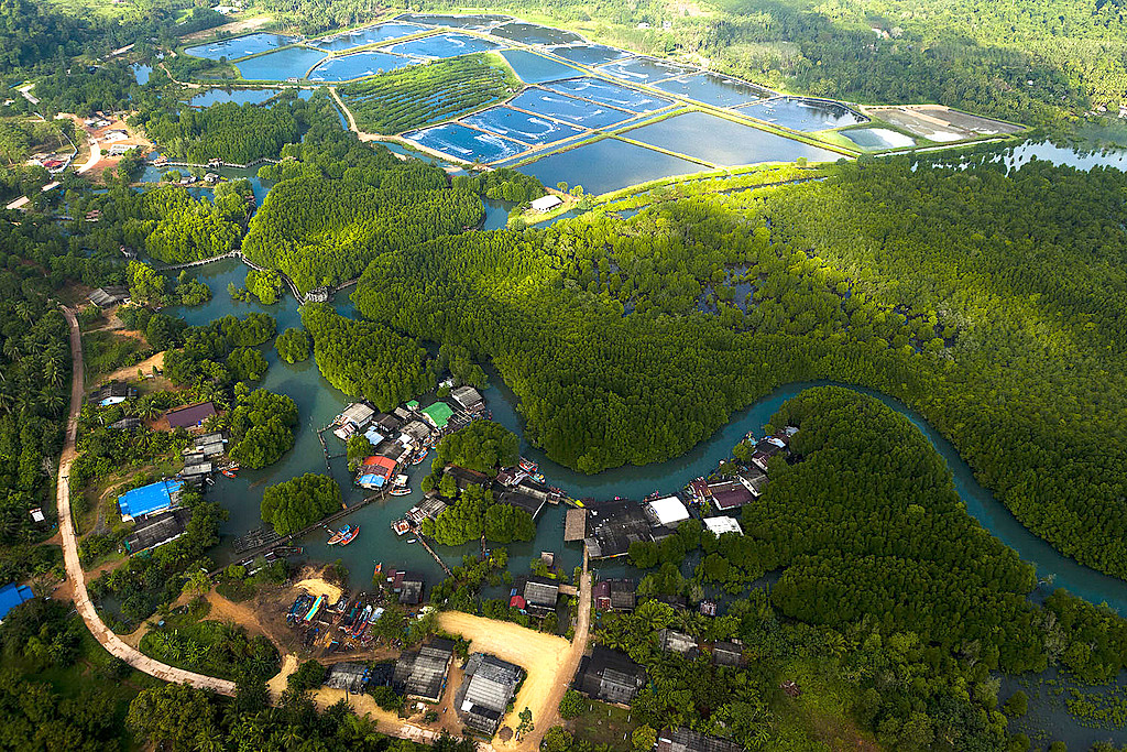 Thailand From Above 06.jpg