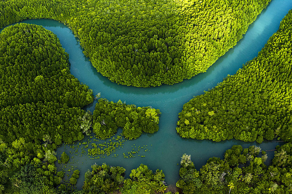 Thailand From Above 07.jpg