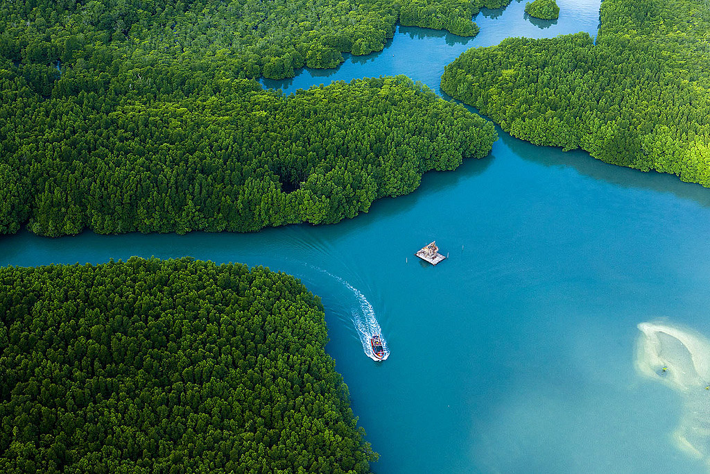 Thailand From Above 08.jpg