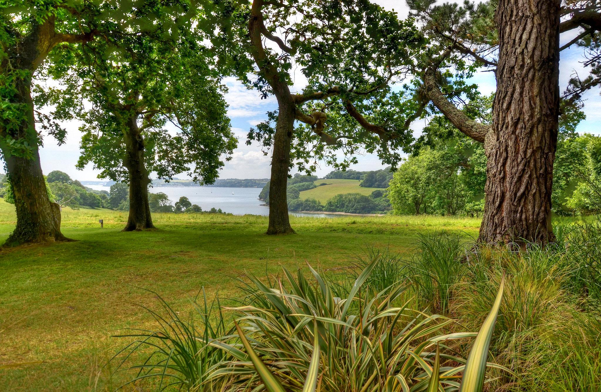 Trelissick Gardens & the River Fal, Cornwall by Baz Richardson.jpg