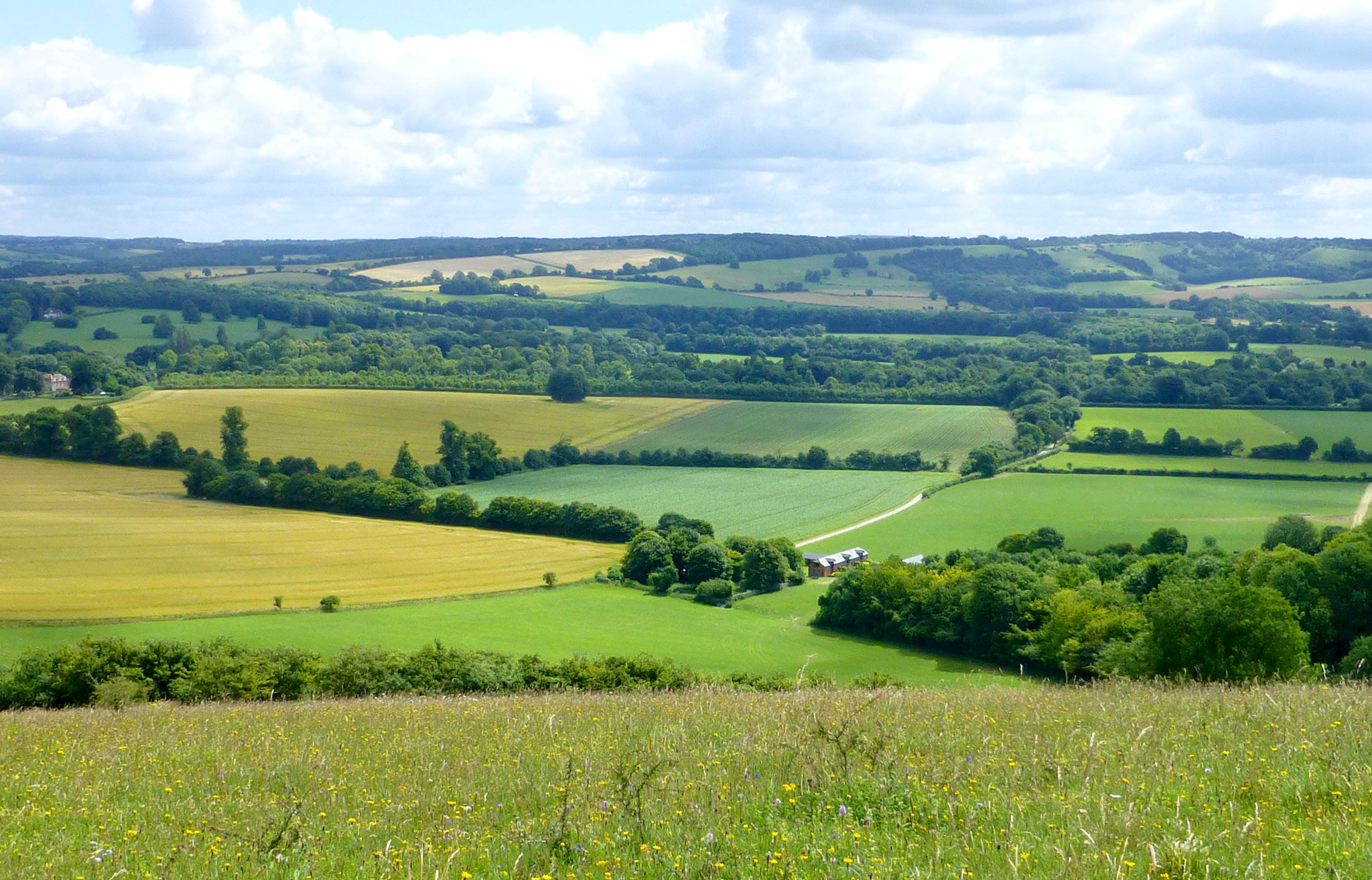 View across the valley from Beacon Hill Warnford to Old Winchester Hill by East Med Wanderer.jpg