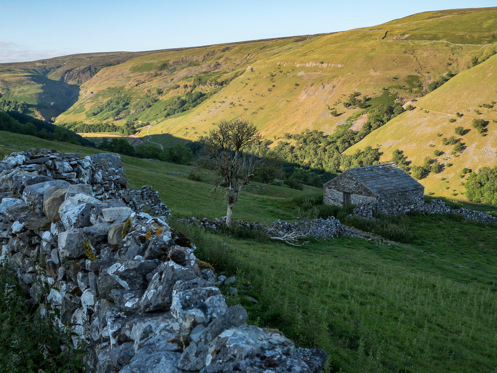 Upper Swaledale, Yorkshire by Bob Radlinski.jpg