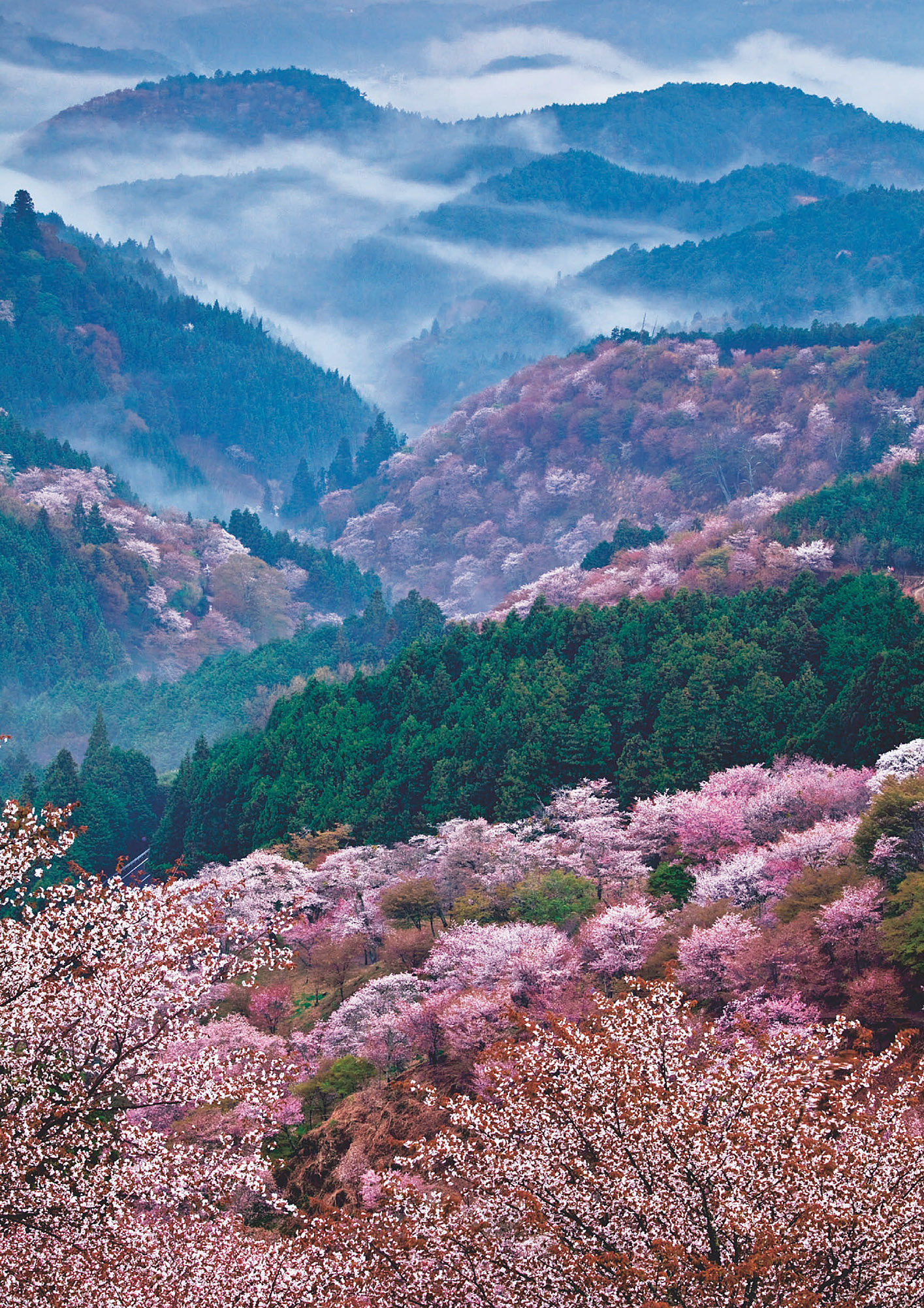 Sacred Sites and Pilgrimage Routes in the Kii Mountain Range Mie, Nara, and Wakayama prefectures.jpg