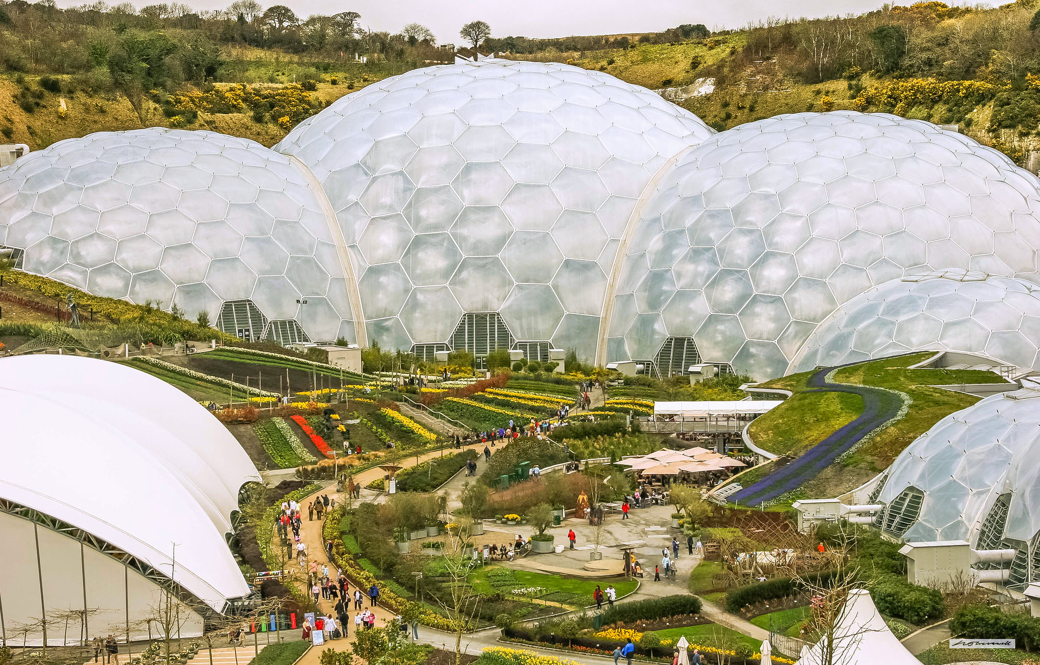 Eden Project, St. Austell in Cornwall by Neil Cresswell.jpg