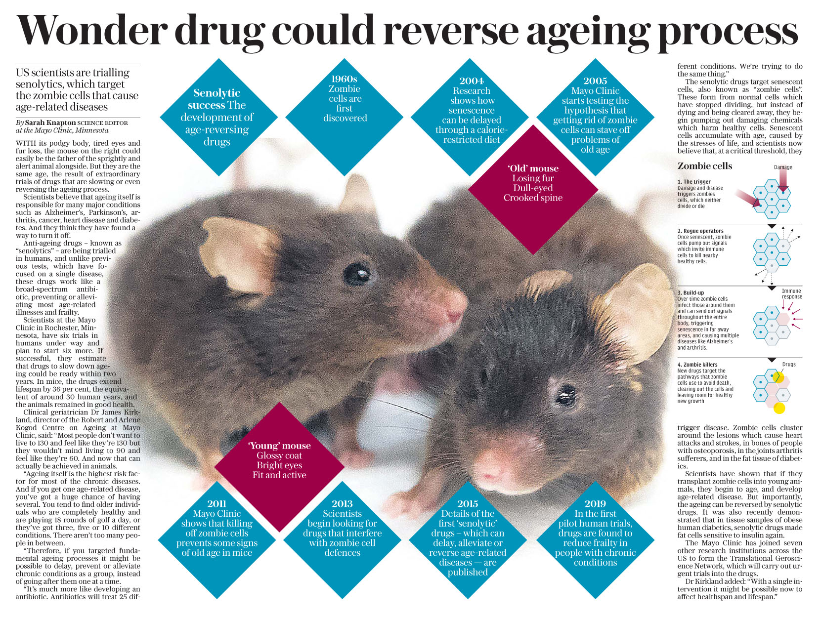 The Daily Telegraph April 3 2019 Medicine.jpg