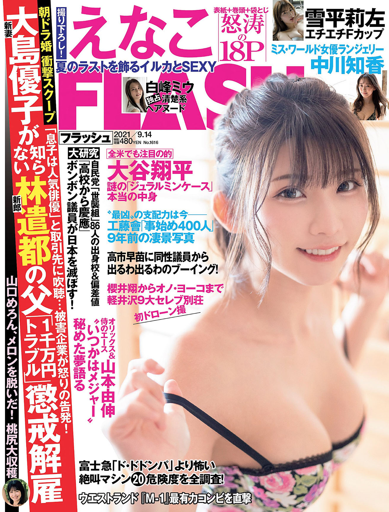 Enako Flash 210914 01.jpg
