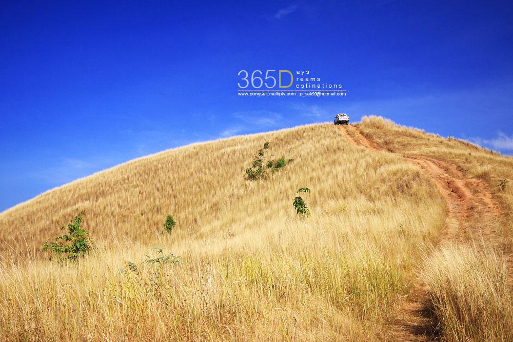 Scenic Thai 78.jpg