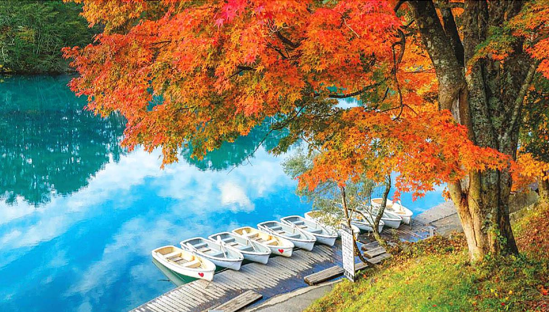 Autumn in Japan 11.jpg