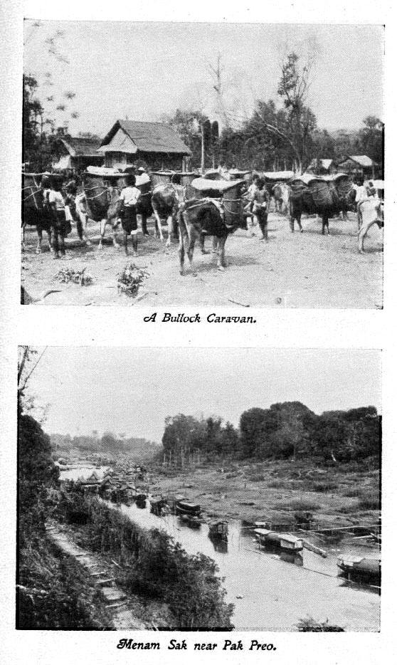 1905 Pak Peo.jpg