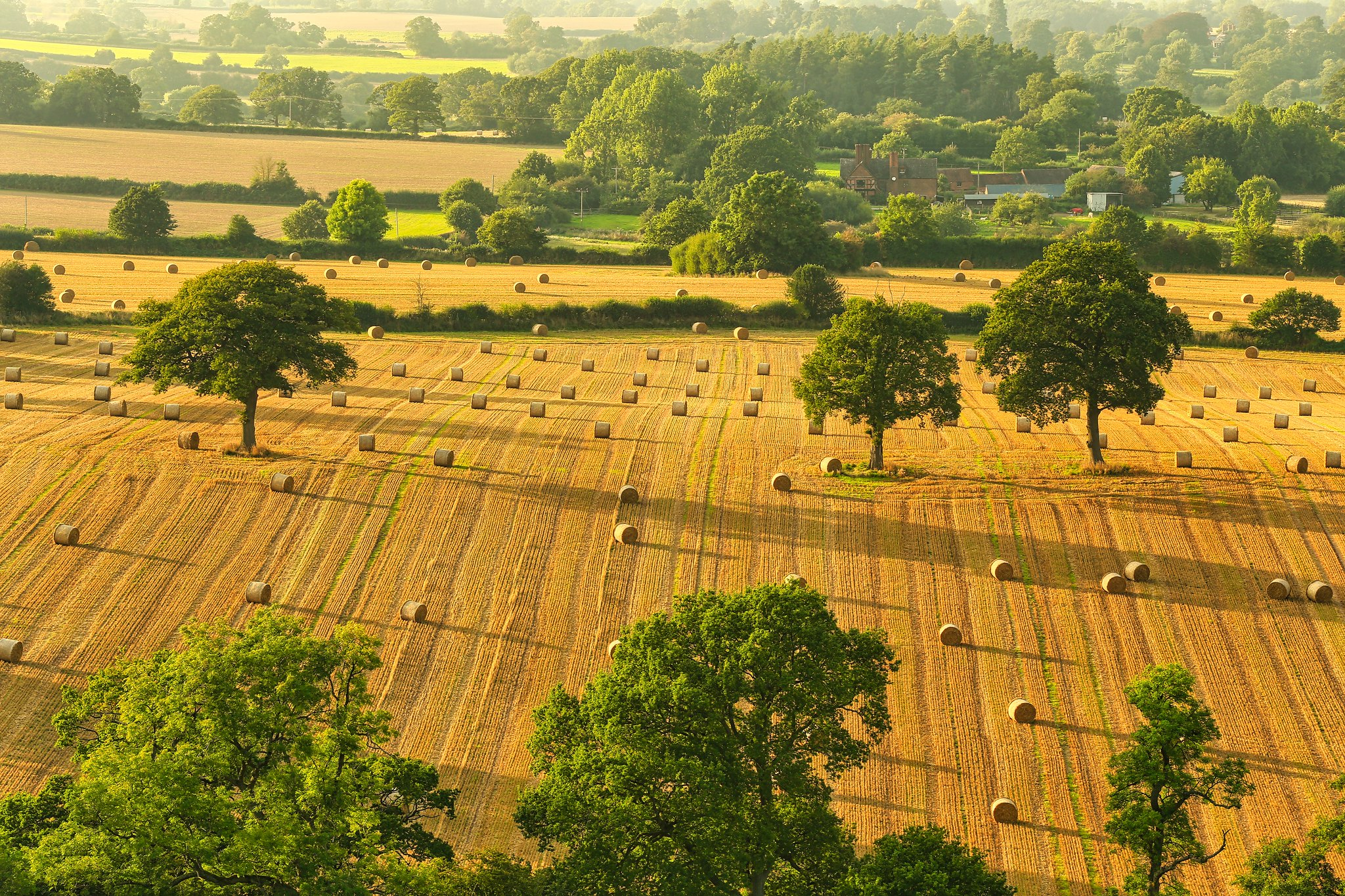 Enville, South Staffordshire by Jeff Dugmore.jpg