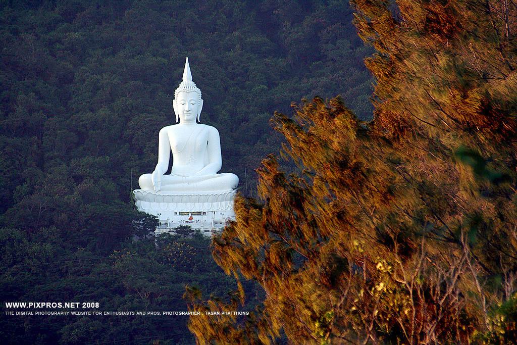 Scenic Thai 64.jpg