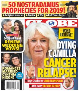 Globe 2019-01-14.jpg
