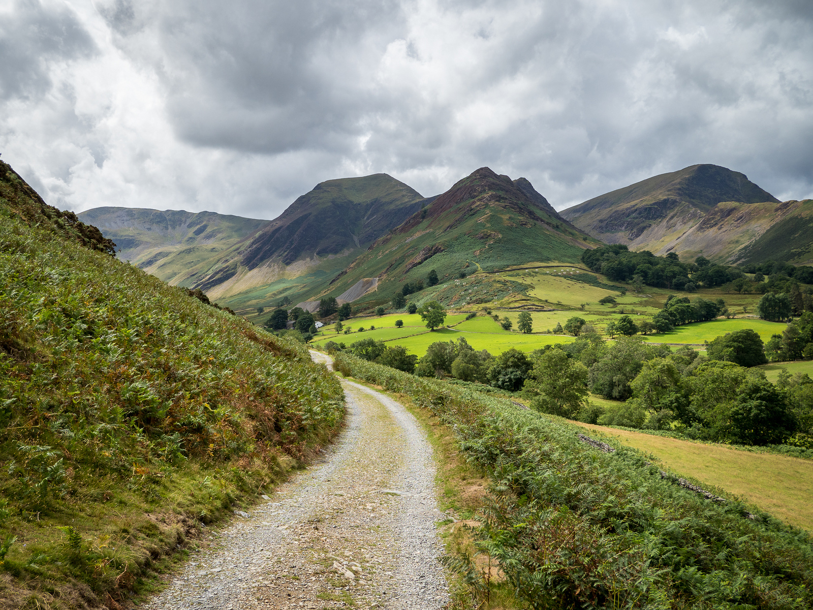 Looking back at Newlands, Lake District by Bob Radlinski.jpg