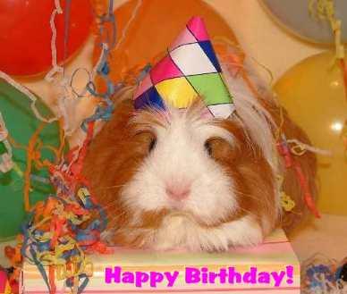 mavis happy birthday ecard