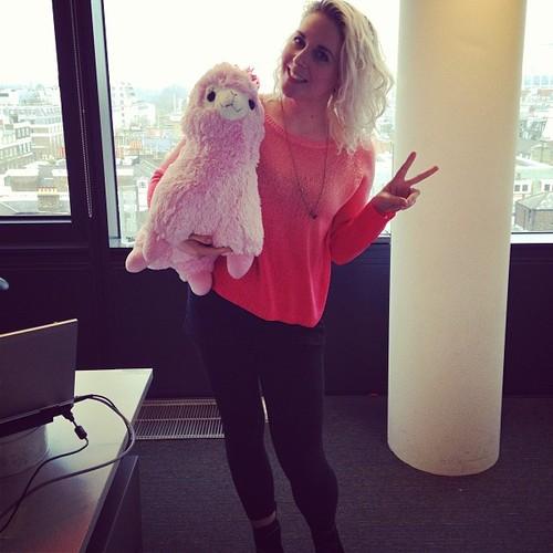 LMC and a llama cute