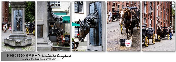Лошадиный-фонтан-в-Брюгге