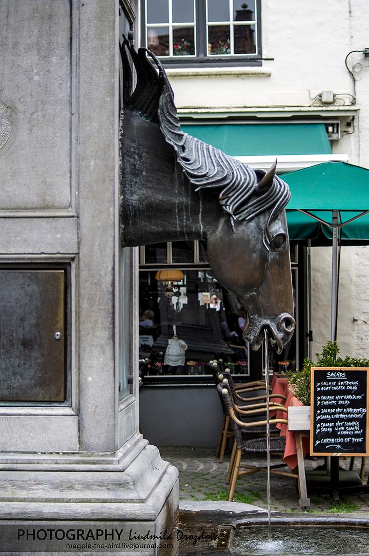 Лошадиный-фонтан-в-Брюгге 4