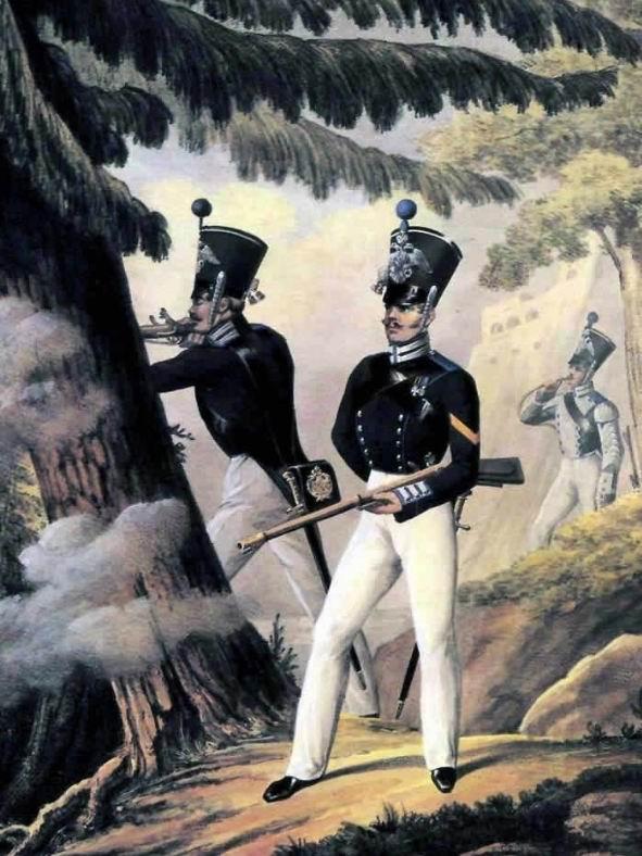 Социальный состав Лейб-Гвардии Финского стрелкового батальона в 1830-31гг. Солдаты