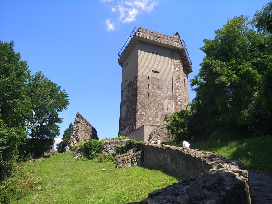 Замки и рыцари