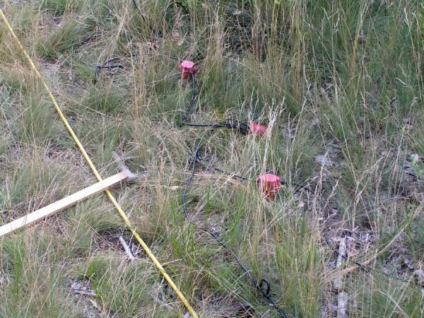 кабель в отделении Луганского природного заповедника