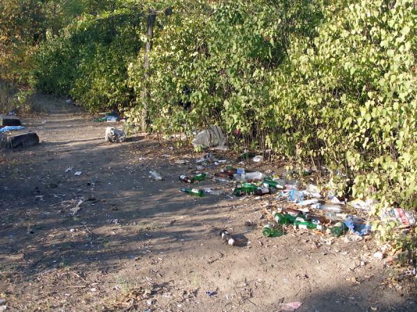 мусор в парке