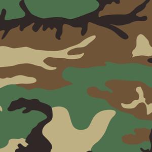 US m81 Woodland camouflage pattern