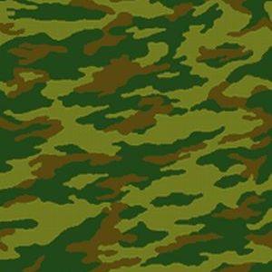 Вооружённые Силы Расцветка 1998 года Флора