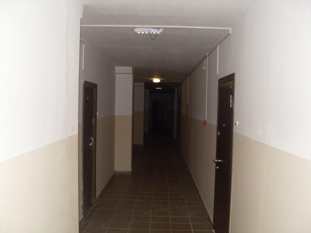 SDC13895