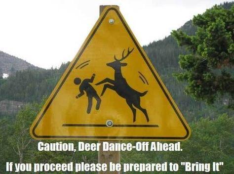 954a6671b60d288a45160d0ec00cf717--dance-humor-lol-funny