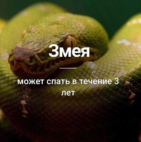 54319e6d336c567a12ef0797cca1274a