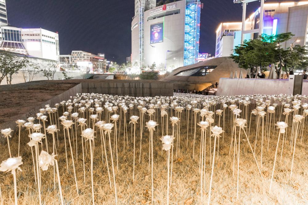 Поле LED роз. С 30 апреля больше не светятся((