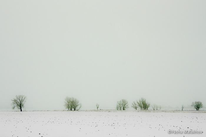 Зимний пейзаж из окна автомобиля